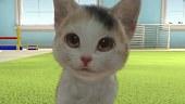 Tráiler de Little Friends: Dogs & Cats
