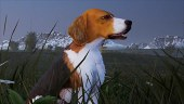 Hunting Simulator 2 contará con perros de cazas entre sus novedades: así nos acompañarán en el simulador