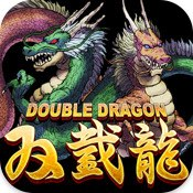 Carátula de Double Dragon - iOS