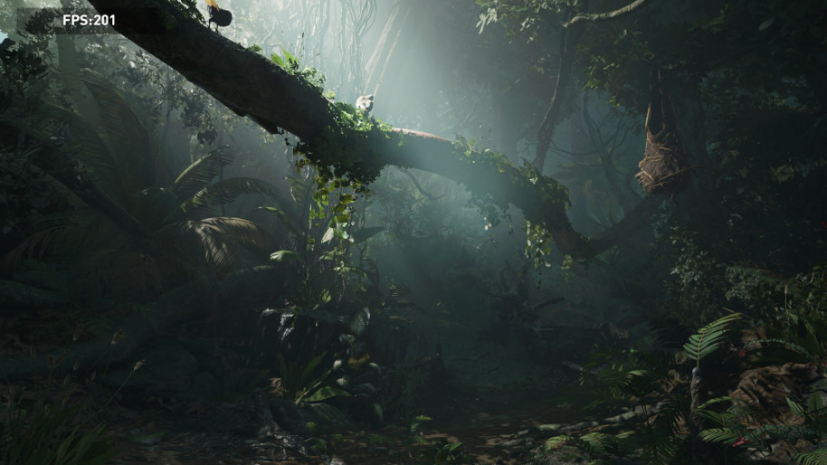 Shadow of the Tomb Raider, 1080p Ultra.